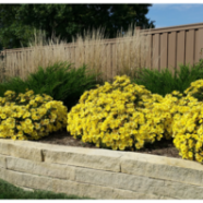 Employment Opportunities at Stony Creek Landscapes, Inc.